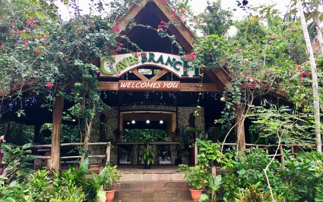 Ian Anderson's Caves Branch Jungle Lodge – Guest Post by Linda Beach